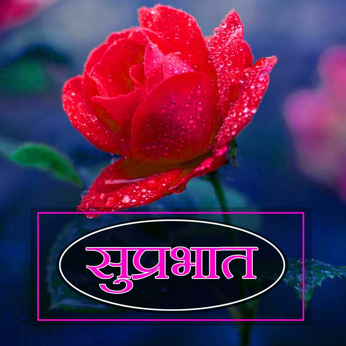 New Suprabhat Pictures Images