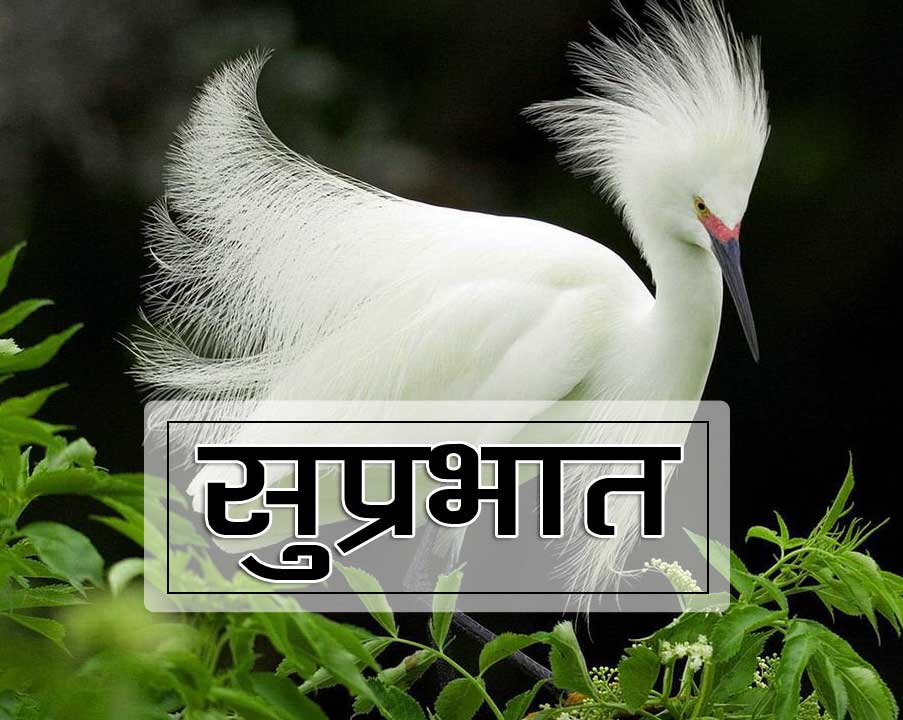 New Suprabhat Wallpaper Free