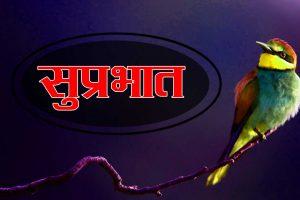 New Suprabhat Wallpaper Hd Pics