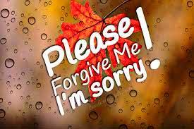 Sorry Whatsapp Dp Download Wallpaper