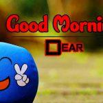 4k Ultra HD Good Morning Photo Download Free