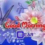 4k Ultra HD Good Morning Pics Download Free