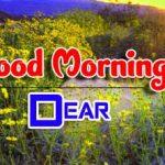 4k Ultra HD Good Morning Wallpaper Free 2