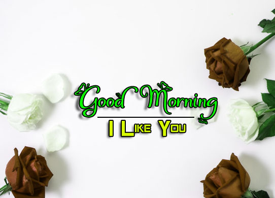 Beautiful Good Morning Wishes Photo Download