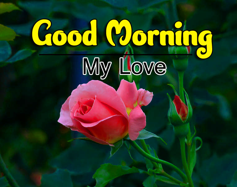 Beautiful Good Morning Wishes Pics Download