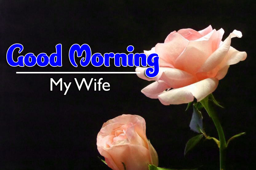 Beautiful Good Morning Wishes Pics New Download