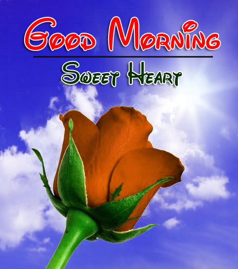 Beautiful Good Morning Wishes Pics