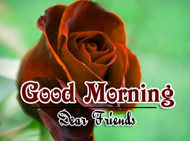 Beautiful Good Morning Wishes Pictures HD