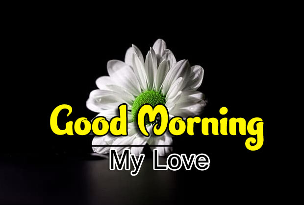 Beautiful Good Morning Wishes Pictures for Whatsapp