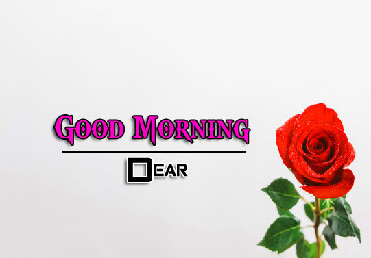 Beautiful Good Morning Wishes Wallpaper Download 3