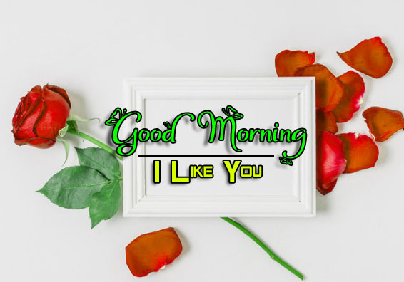 Beautiful Good Morning Wishes Wallpaper Download 4