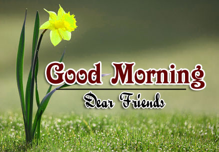 Beautiful Good Morning Wishes Wallpaper Download
