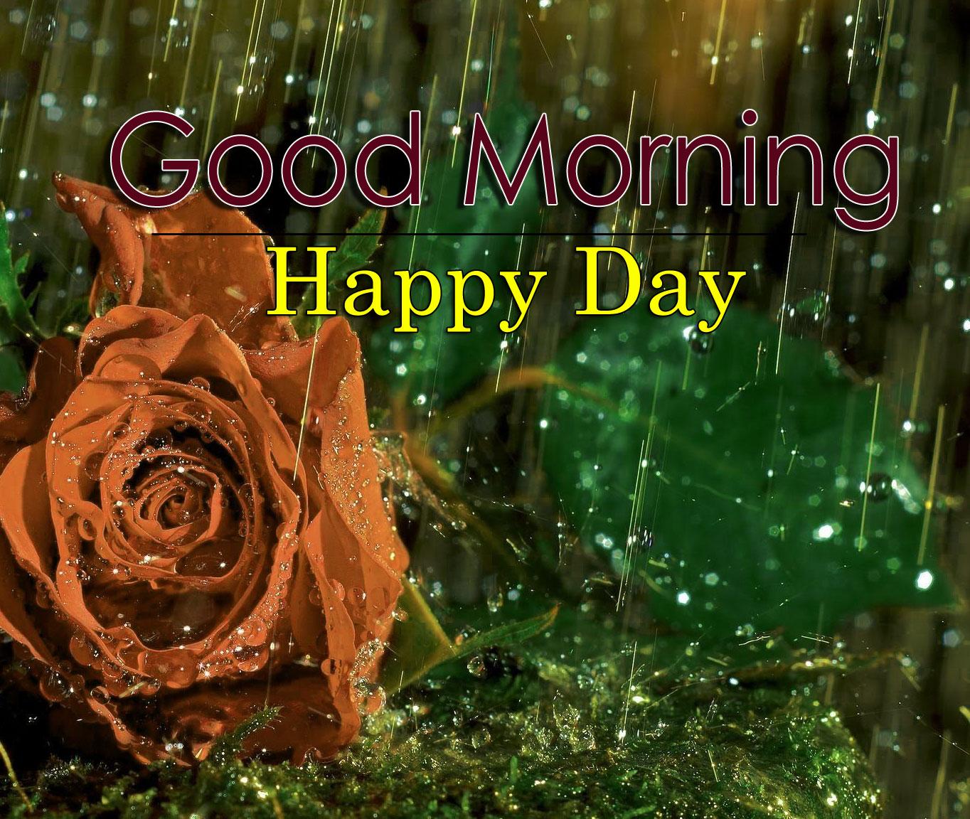 Best Flower 4k Good Morning Pics Wallpaper Free