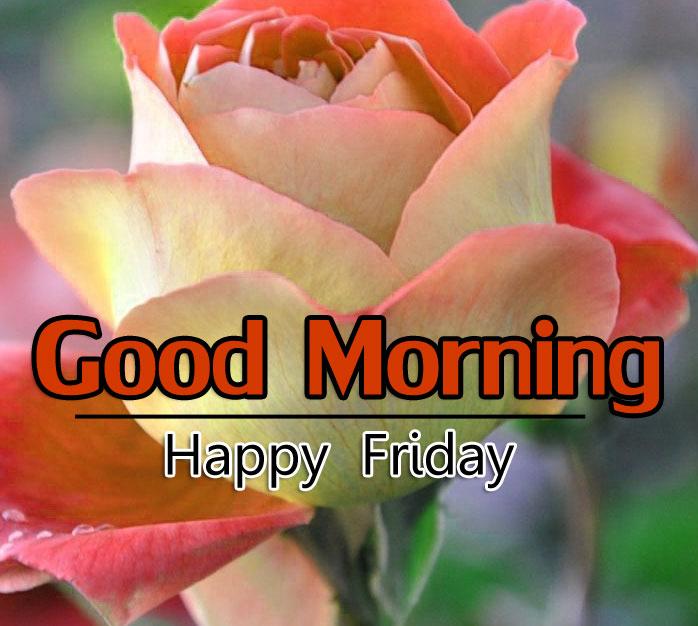 Best Flower 4k Good Morning Wallpaper pics Download