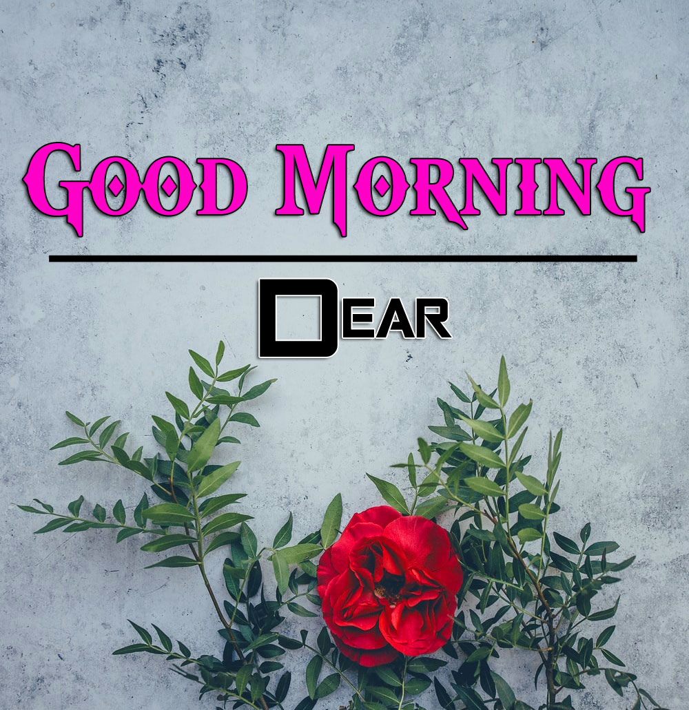 Best Good Morning Wishes 4k Pics Download