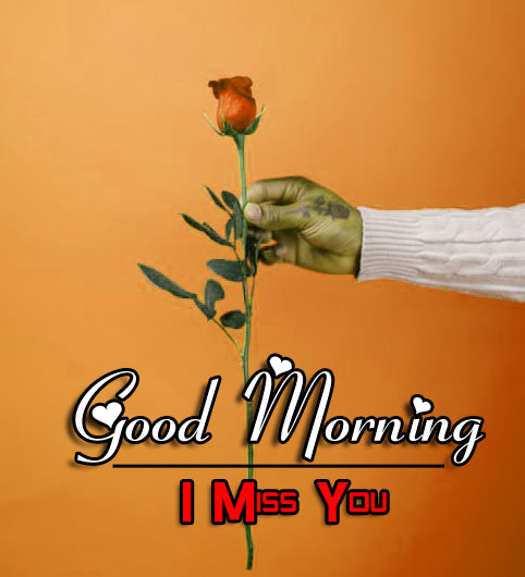 Best Good Morning Wishes 4k Pics New Download