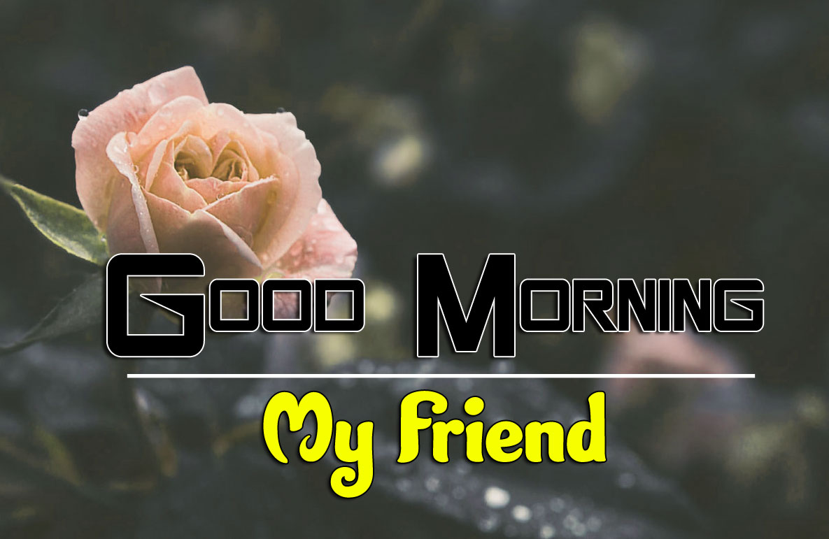 Best Good Morning Wishes 4k Pics Wallpaper Download