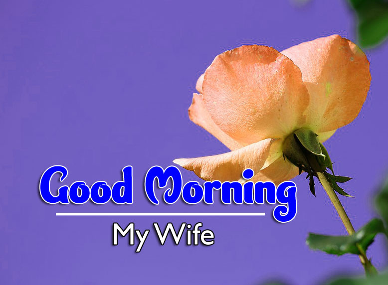 Best Good Morning Wishes 4k Wallpaper Free Download