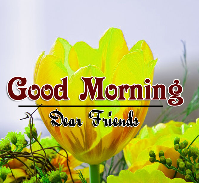 Best HD Good Morning Wishes Images New