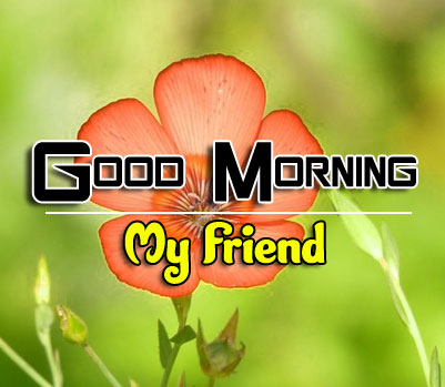 Best HD Good Morning Wishes Images for Friend