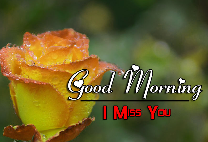 Best HD Good Morning Wishes Photo Free 2
