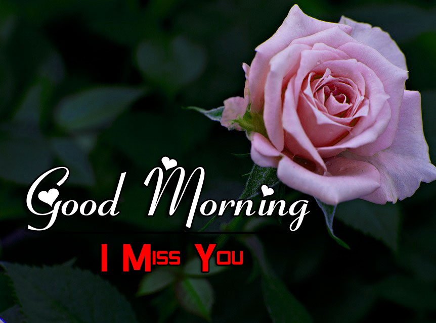 Best HD Good Morning Wishes Pics Download