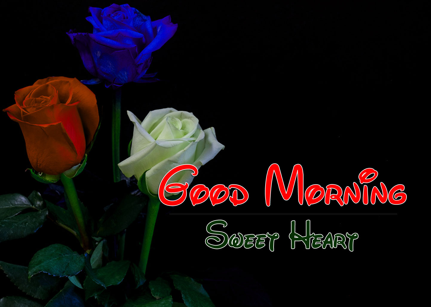 Best HD Good Morning Wishes Wallpaper Download 2