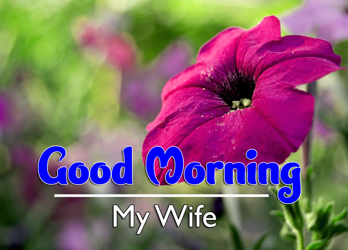 Best HD Good Morning Wishes Wallpaper HD