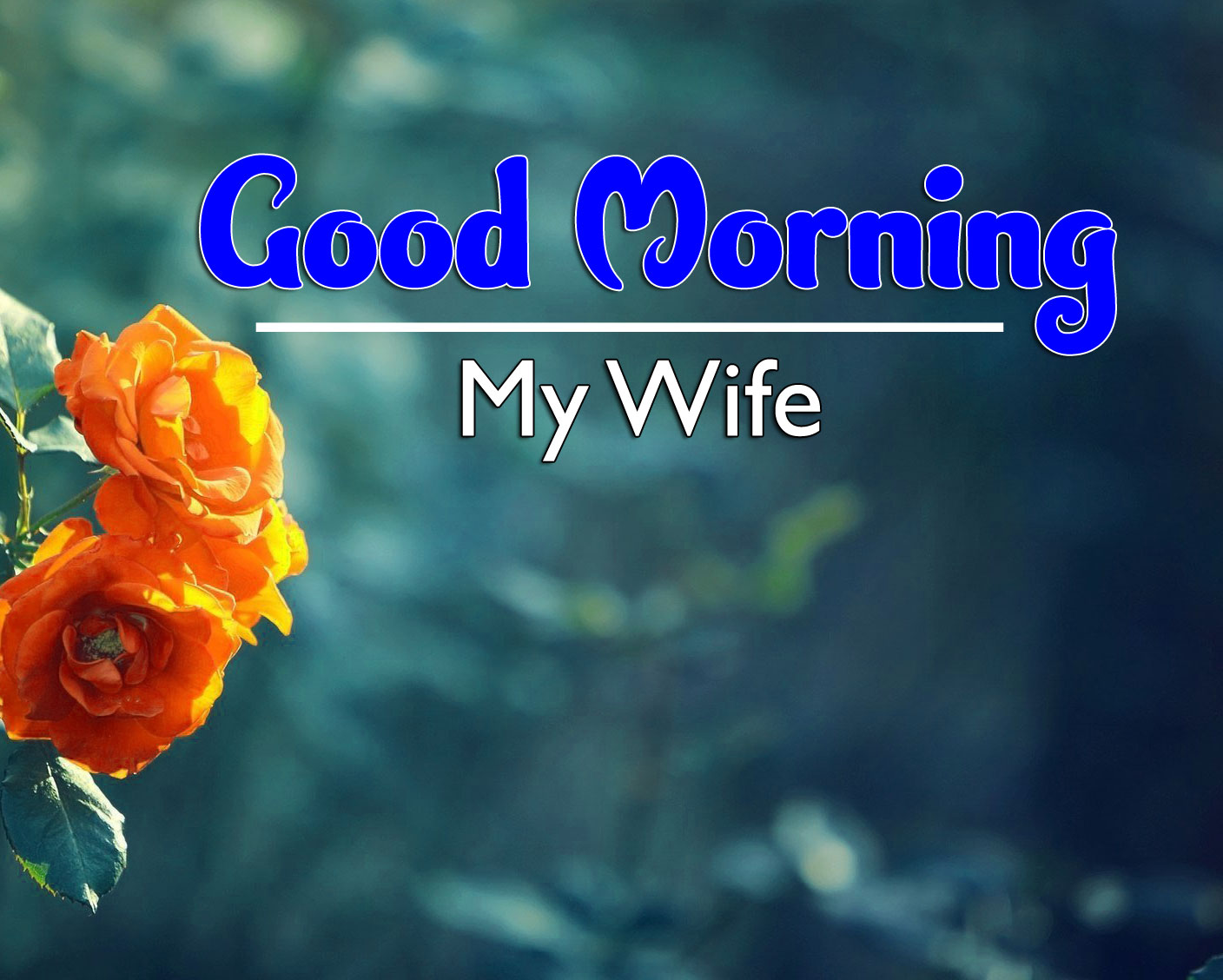 Best New Good Morning Wishes 4k Pics Download