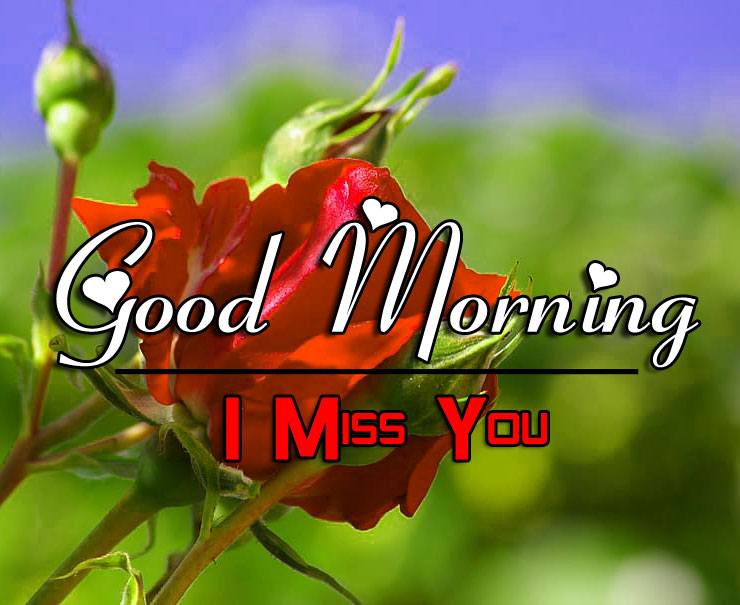 Best New HD Good Morning Wishes Images Pics