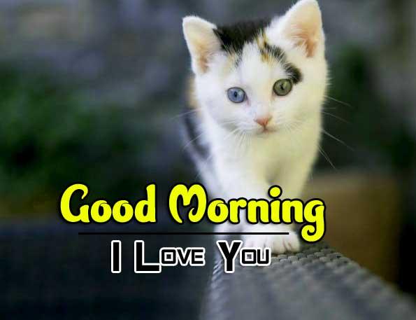 Best New Wonderful Good Morning 4k Pics Download