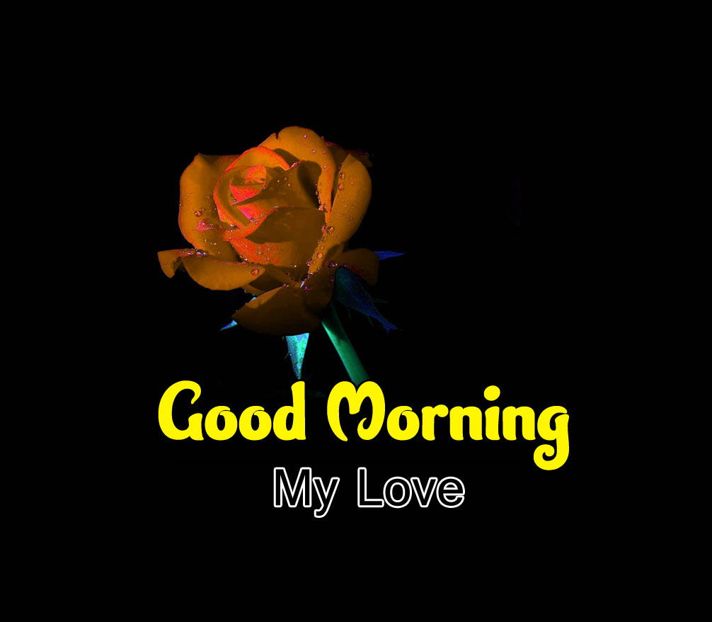 Best Quality Good Morning Wishes 4k Pics Wallpaper Free