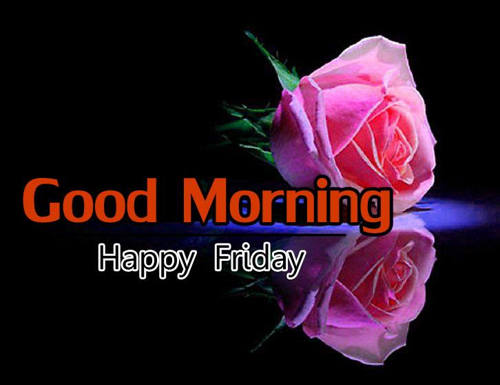 Flower 4k Good Morning Images Pics Download