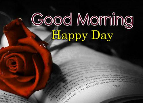 Flower 4k Good Morning Images for Love Couple