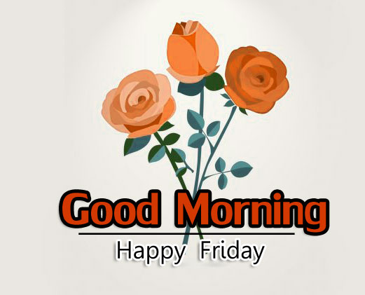 Flower 4k Good Morning Photo Download 6
