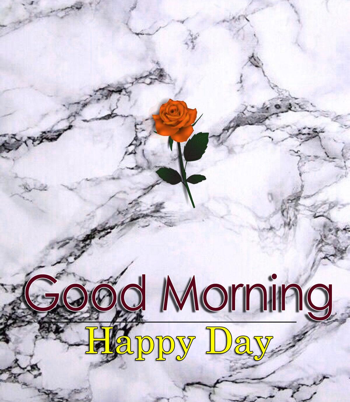 Flower 4k Good Morning Pics Download for Facebook