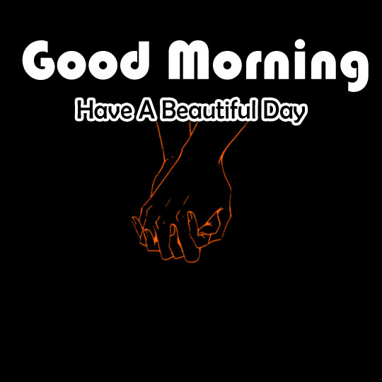 Flower 4k Good Morning Pics Wallpaper Download