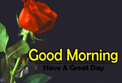 Flower 4k Good Morning Pics Wallpaper In HD
