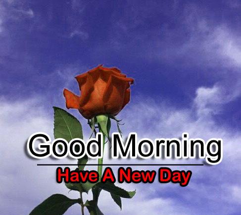 Flower 4k Good Morning Wallpaper for Facebook