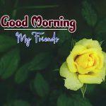 Flower 4k Ultra HD Good Morning Images Download