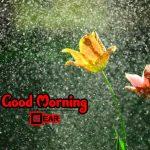 Free 4k Ultra HD Good Morning Wallpaper Download