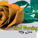 Free 4k Ultra HD Good Morning Wallpaper Download 2