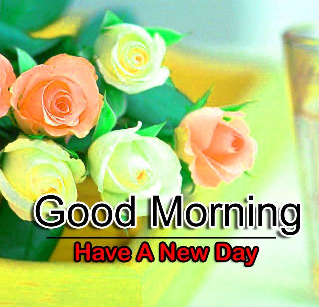 Free Best Flower 4k Good Morning Images Download