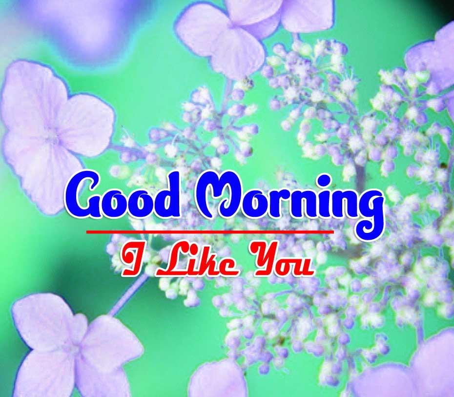 Free Best Wonderful Good Morning 4k Pics Wallpaper Free