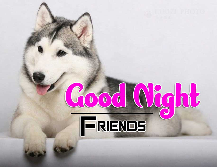 Free Full HD Good Night Wallpaper Free