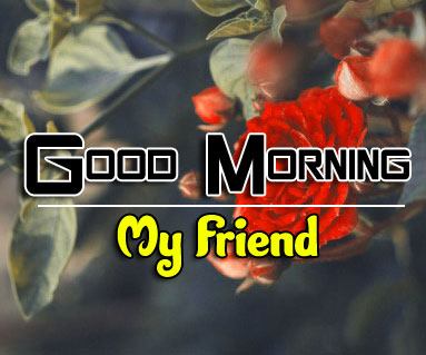 Free Good Morning Pics Download 2 1