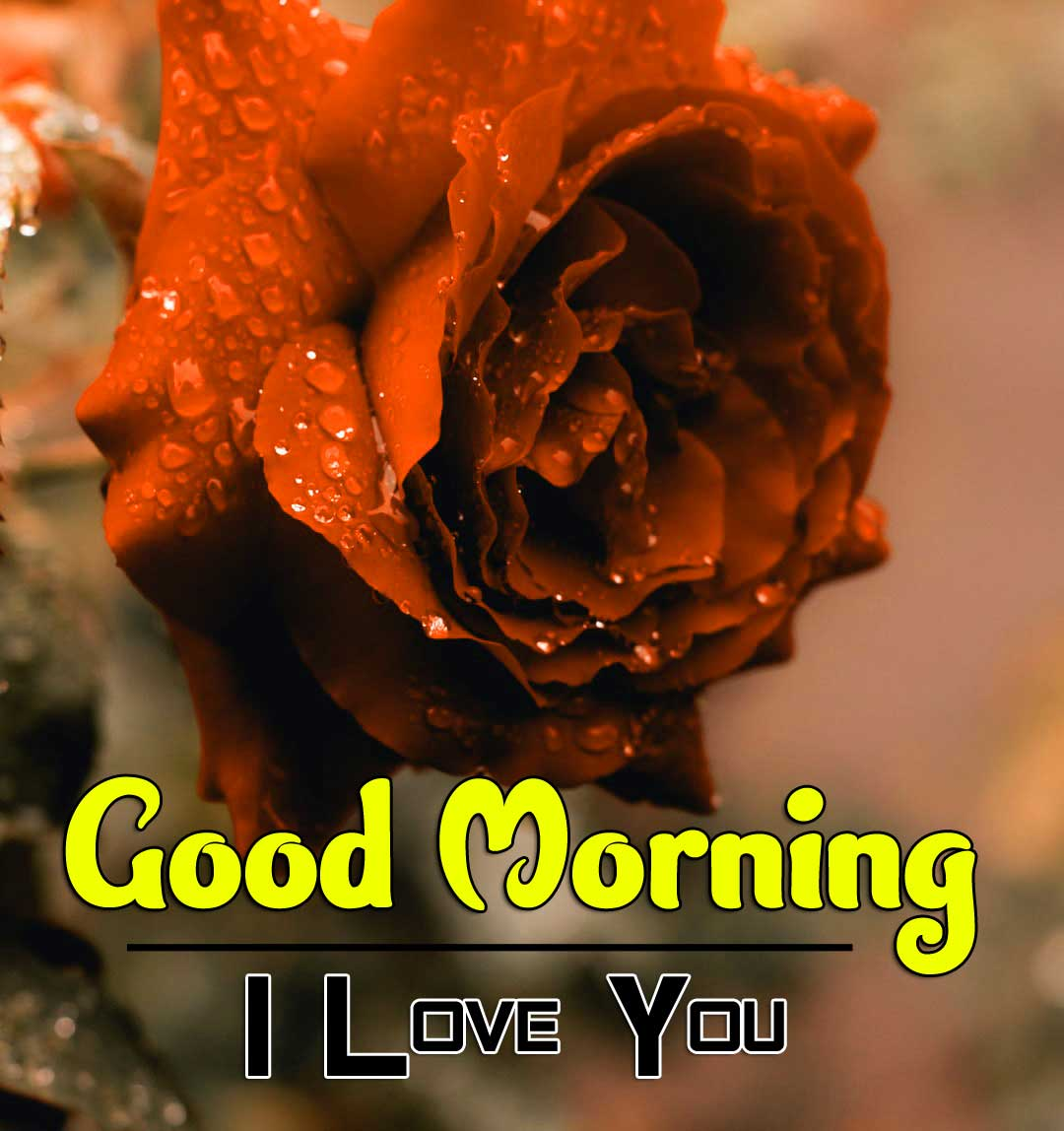 Free New Best Good Morning Wishes Pics Images