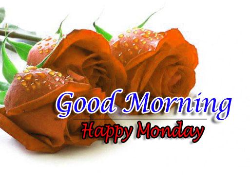Free Top Flower 4k Good Morning Pics Download