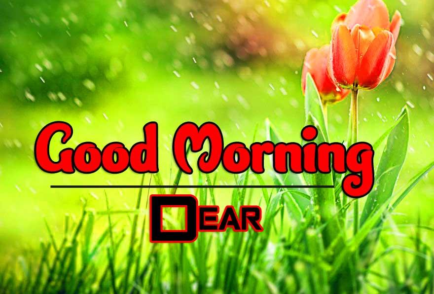 Free Wonderful Good Morning 4k Images Download 2