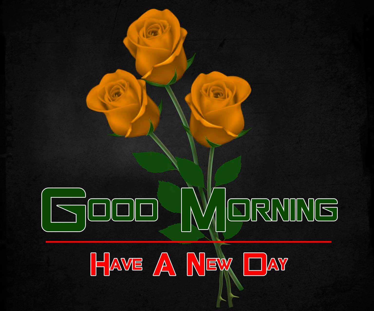 Free Wonderful Good Morning 4k Pics Images Download